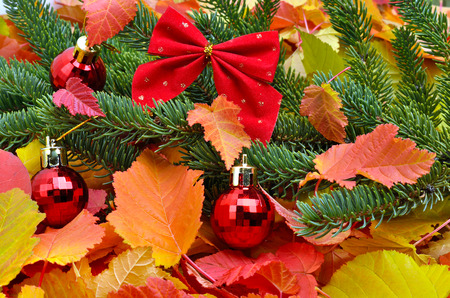 hristmas: Christmas decoration christmas baubles and pinetree on the background of autumn leaves