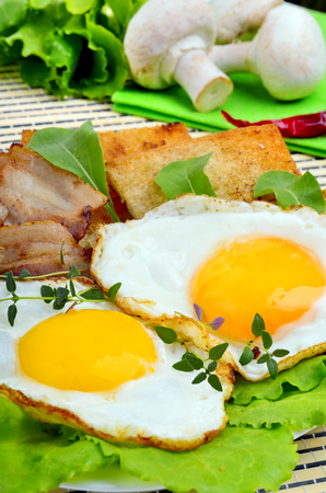 english cucumber: Scrambled eggs and bacon with croutons and salad leaves on plate Stock Photo