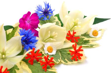 petunia wild: Bouquet of beautiful wildflowers, chamomiles, chrysanthemums, petunia,  yucca isolated on white background Stock Photo