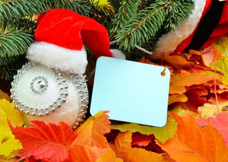 Christmas decoration, Santa Claus hat and pinetree on the background of autumn leaves.