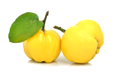 Ripe quinces isolated on white Standard-Bild