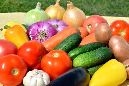 Fresh vegetables on grass on nature