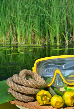 Water lily, diving mask and rope on the background of green reeds and river. Standard-Bild - 121736001