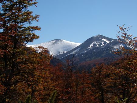 landscape of volcano with autumn trees  Stock Photo