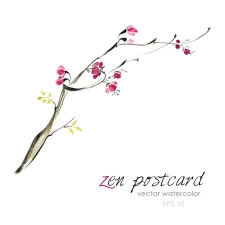 zenlike: Chinese painting - zen-like natural watercolor sakura illustration on white