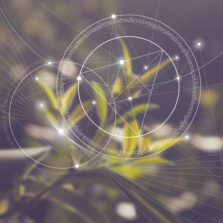 Geometría sagrada. Las matemáticas, la naturaleza y la espiritualidad en la naturaleza. La fórmula de la naturaleza. No hay principio ni fin del Universo, y no hay principio ni fin de la vida y el placer. Ilustración de vector