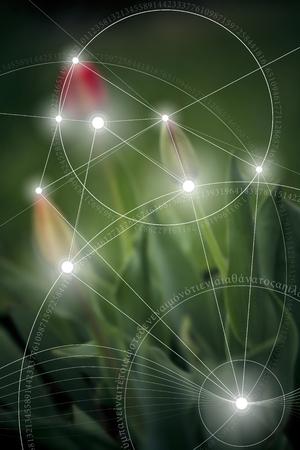 Heilige Geometrie. Mathematik, Natur und Spiritualität in der Natur. Die Formel der Natur. Es gibt keinen Anfang und kein Ende des Universums, und keinen Anfang und kein Ende des Lebens und der Glückseligkeit.