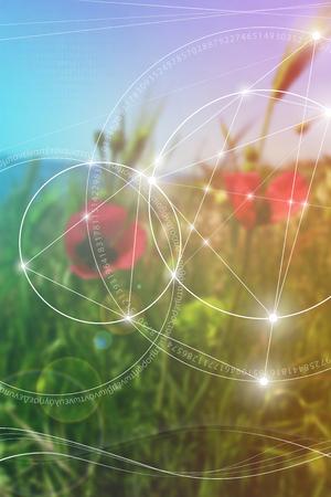 Heilige geometrie. Wiskunde, natuur en spiritualiteit in de natuur. De formule van de natuur. Er is geen begin en geen einde van het heelal, en geen begin en geen einde van het Leven en de Bliss. Stockfoto