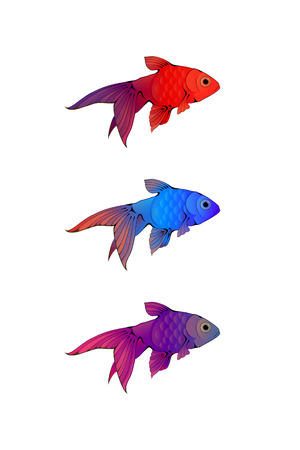 guppy: Hand-drawn ink-stylized little colorful aquarium fishes isolated on white