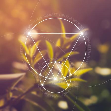 Heilige geometrie. Wiskunde, natuur en spiritualiteit in de natuur. De formule van de natuur. Er is geen begin en geen einde van het heelal, en geen begin en geen einde van het Leven en de Bliss.