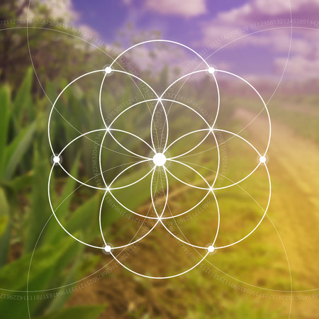 natures: Flower of life illustration- the interlocking circles ancient symbol. Sacred geometry. Mathematics, nature, and spirituality in nature. Fibonacci row. The formula of nature. Self-knowledge in meditation.