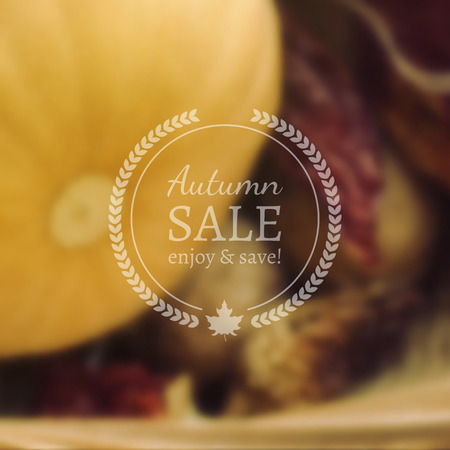 Autumn Sale  on Photorealistic Colorful Blur Background