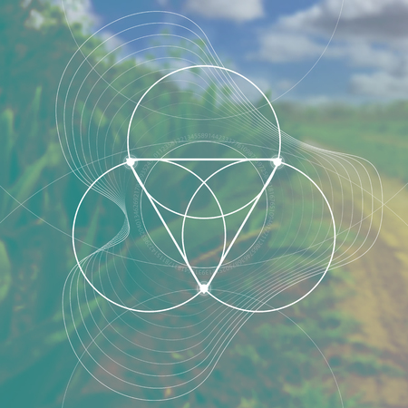 Flower of life - the interlocking circles ancient symbol in front of blurred photorealistic nature background. Sacred geometry - mathematics, nature, and spirituality in nature. The formula of nature.