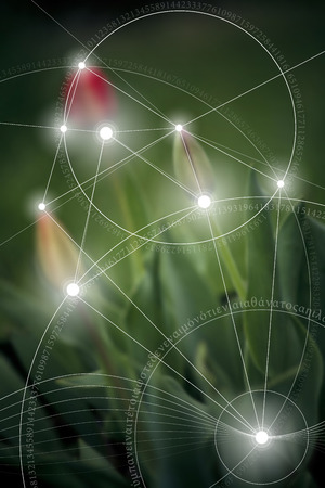 Sacred geometry design with golden ratio numbers, interlocking circles, triangles and squares, flows of energy and particles in front of outer space background. The formula of nature. Vectores