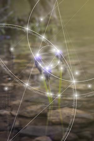 Diseño de geometría sagrada con números de proporción áurea, círculos entrelazados, triángulos y cuadrados, flujos de energía y partículas frente al fondo del espacio exterior. La fórmula de la naturaleza.