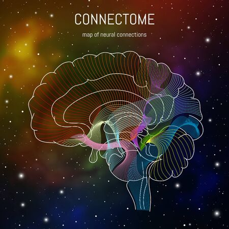 Neuroscience infographic on space background. Brain cells connectome concept.Neural network, neurons forming a complex map for mind and thinking. Vettoriali