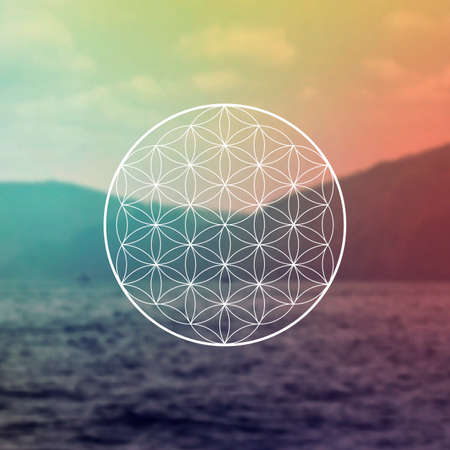Flower of life sacred geometry illustration with intelocking circles and light dots in front of photographic background. Hipster tree of life sci fi art Ilustración de vector