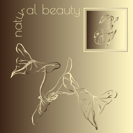 natural beauty: Spa natural beauty theme vector illustration with  exotic leaves on gold  background.
