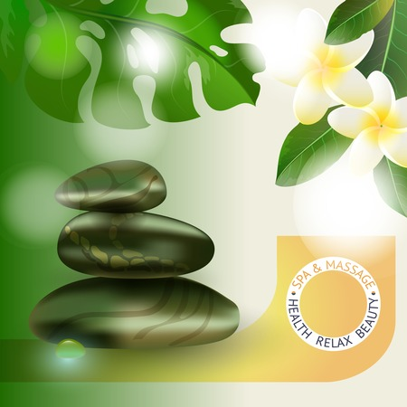 stack stones: Vector illustration with  spa accessories stack stones and drop on floral background.