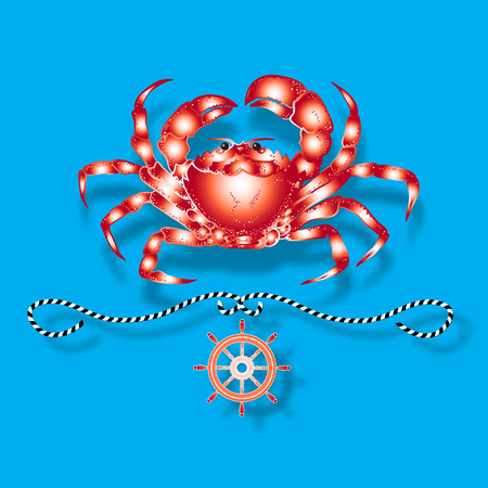 blue crab: Vector illustration with isolated crab and nautical design elements helm, rope  on blue background.
