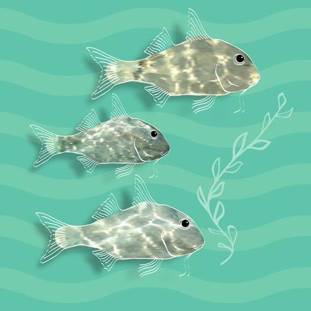 alga: Vector illustration with  fishes and alga on aquamarine background.