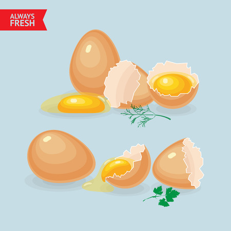 Vector illustrations with eggs, yolks, white, eggshells and greens on blue background. Ilustração