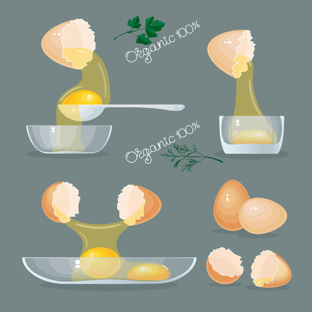 Vector illustration with eggs, yolks, white, eggshells and glass bowls on grey background. Ilustração