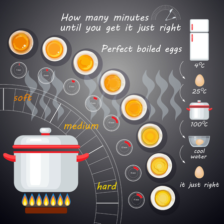 boiled: How to make perfect boiled eggs. Vector illustration with egg infographics. Illustration
