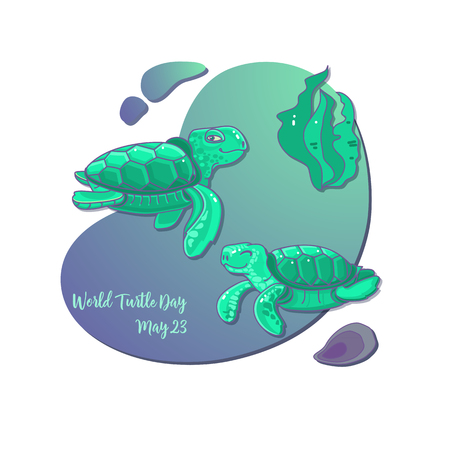 World Turtle Day card.  Vector illustration.