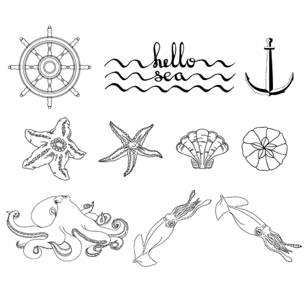Set of various seaweeds and corals icons. Vector.