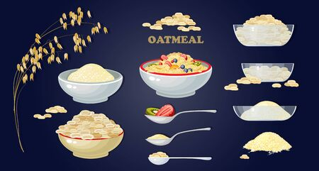 Set of Porridge and fruits and berries. Vector. Ilustração