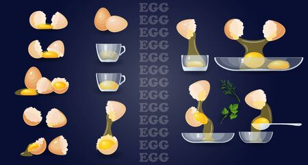 Eggs, yolks, albumen, eggshells, glass bowls. Vector set.