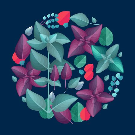 Floral circle pattern with basil leaves. Vector illustration. Иллюстрация
