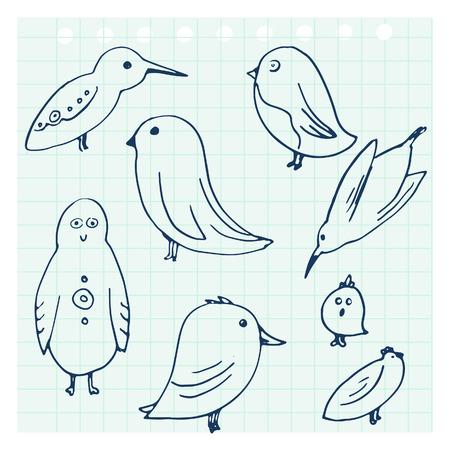 notebook paper: Doodle birds set. Hand drawn vector illustration. Sketch style notebook paper Illustration