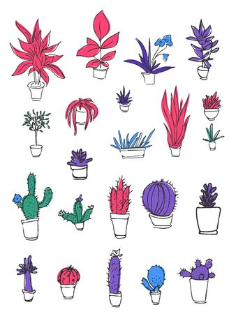spiked: Set of different plants, cactus. Hand drawn vector  illustration.