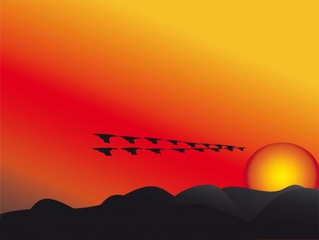autumn; on the backdrop of the setting sun the birds fly away Vector