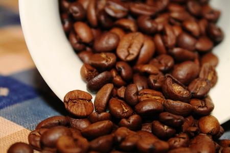 coffea: Coffea arabica Stock Photo