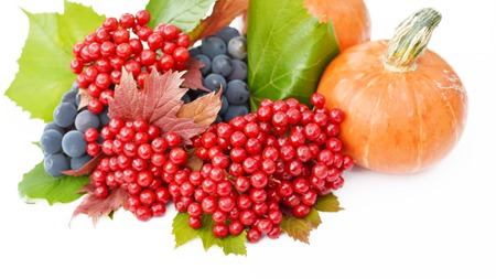 guelderrose: Pumpkin, guelder-rose berries and grapes with green  leaves on a white background Stock Photo