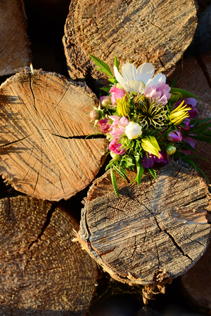 firewood background: Small bouquet of different colored flowers firewood background Stock Photo