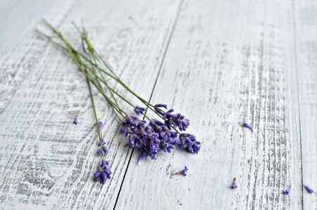 fresh natural lavender flowers bunch over bright wooden background