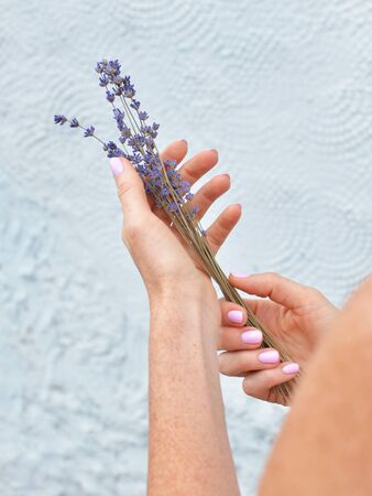 Female hands holding beautiful natural dry lavender flowers bunch. Back view.