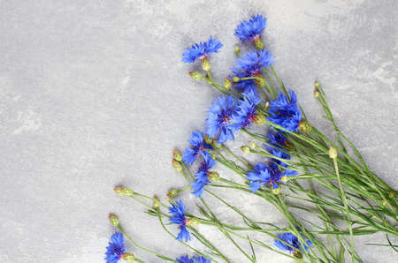 Blue cornflowers bouquet, summer flowers on gray, floral background, copy space, top view. Greeting card background