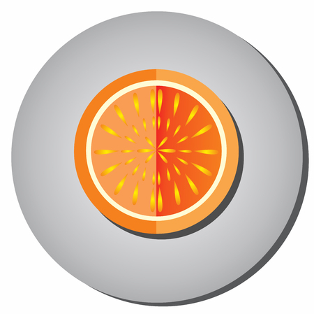 pulp: Icon halves of ripe juicy fruit, oranges, grapefruit style flat on a gray background.Illustration of fruit eating healthy