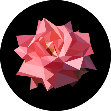 plant delicate: Pink rose in the style of the polygon. Fashion illustration of the trend in style on a black background. Contrast illustration.
