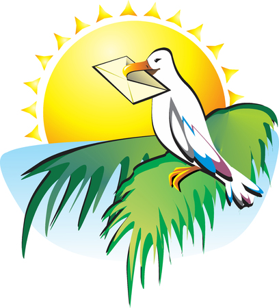 sunburn: You have received a letter. Seagull sitting on a palm tree on a background of the sea and the southern sun. She brought a message.