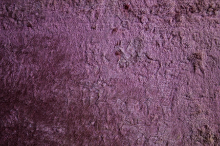 A background of a furry fur, an old plush. The pile is worn down, wiped. Burnt lilac color. Velvet, soft surface. Vintage product. Imagens