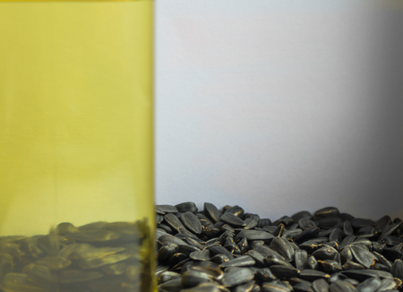 Side of the vegetable oil in the glass, through it are visible black seeds. Raw materials for the production of oil. Behind it is a light gray background. Stock Photo