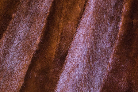 Brown mink fur, warm winter outerwear. The pile is directed in different directions, wide strips are fired. Daylight.