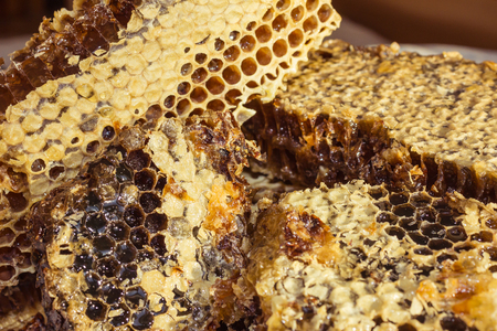 Honey in honeycombs, large pieces. Hexahedral cells covered with light beeswax. Natural product, health benefits. Lateral solar illumination.