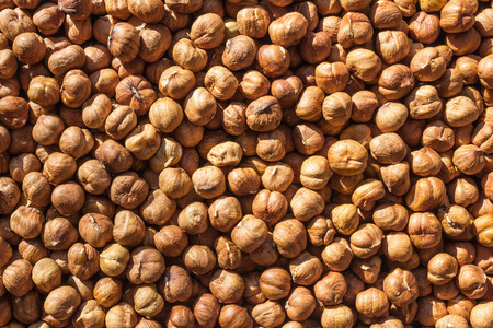 Brown clarified hazelnuts are illuminated by bright sun rays. Organic product, a natural source of protein and vitamins. Vegetarian menu, lean table.
